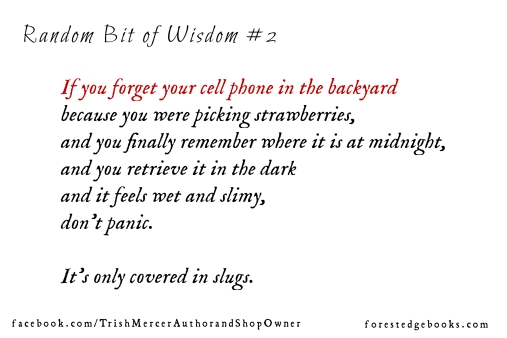 Random bit of wisdom 2a