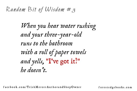 Random bit of wisdom 3