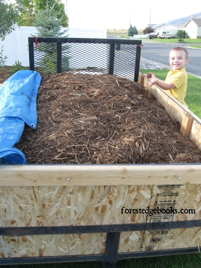3 year old and mulch