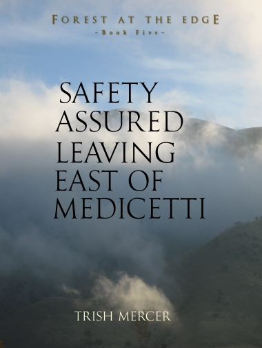 Safety Assured book 5 PreCover