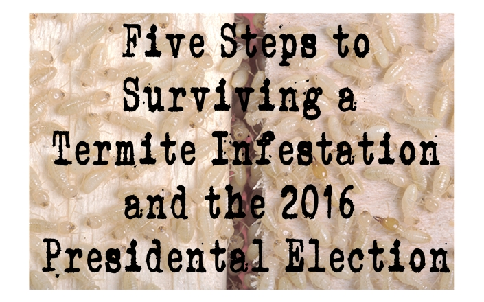 termites-and-elections