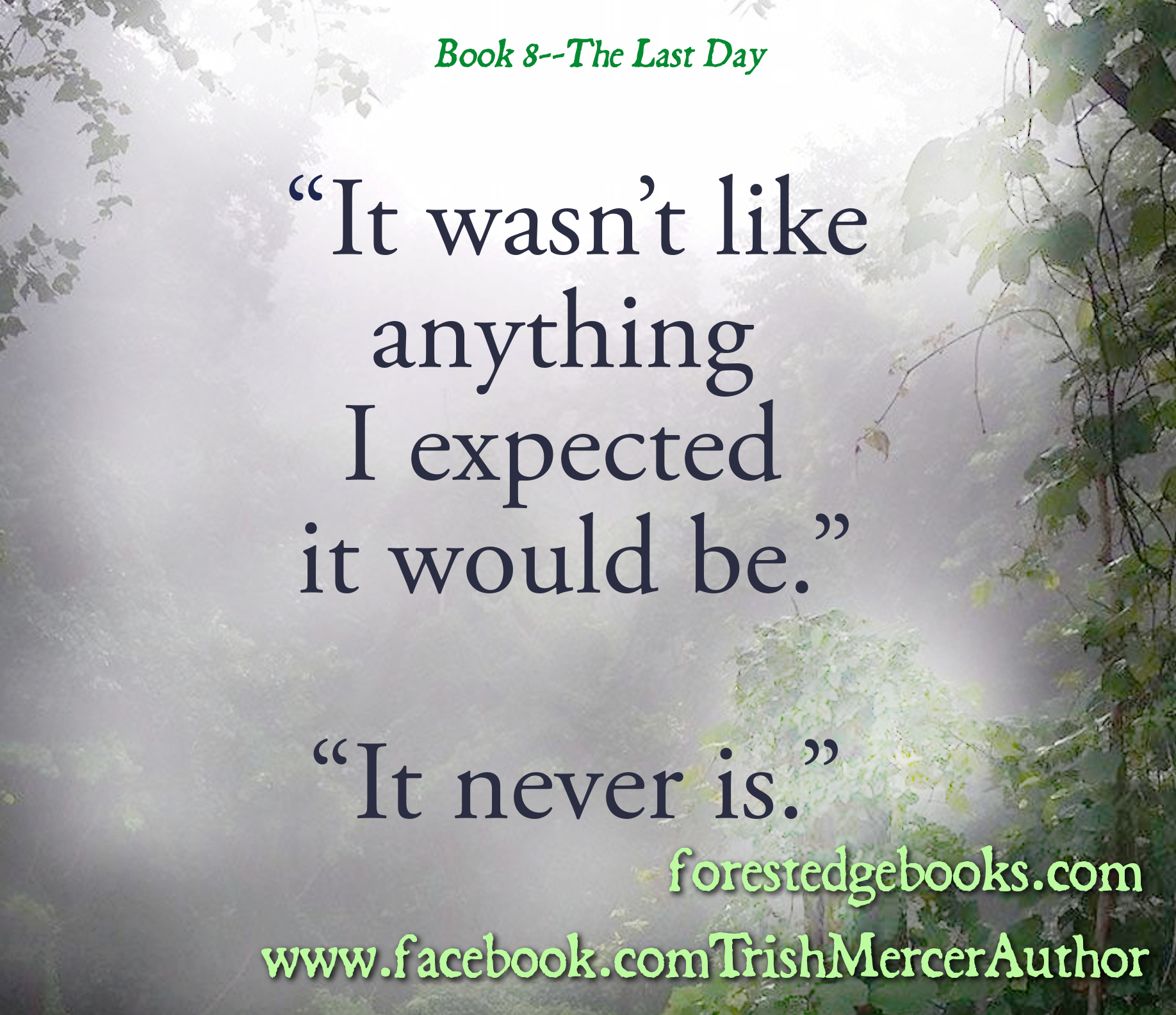 Not what I expected BOOK 8 teaser HORIZONTAL