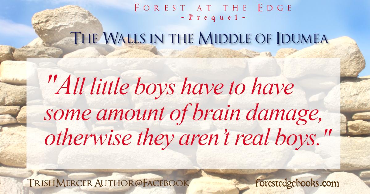 Walls meme brain damag boys