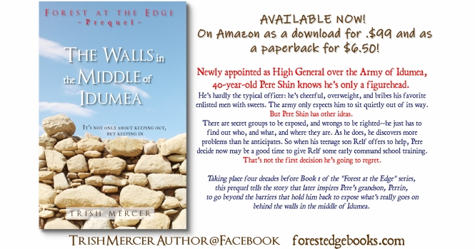 Walls BOOK RELEASE1