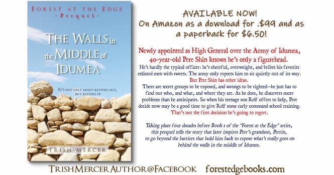 Walls BOOK RELEASE1