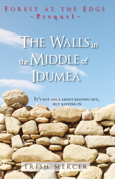 Walls in Idumea FRONT COVER